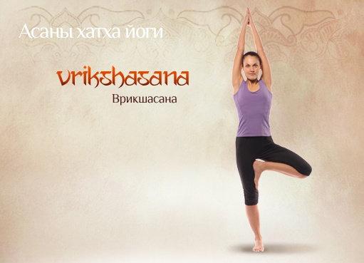 Фитнес йога для каких мышц