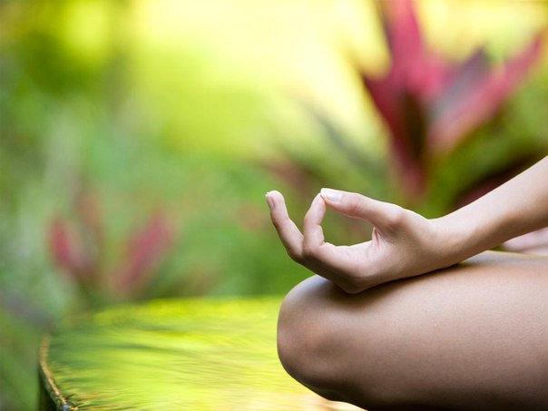 медитация для очищения организма